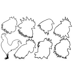 Set of rooster heads vector