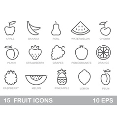 Stylized outlines of fruit icons vector image vector image