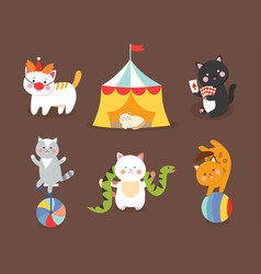 Circus cats cheerful for kids vector