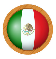 Flag icon design for mexico vector