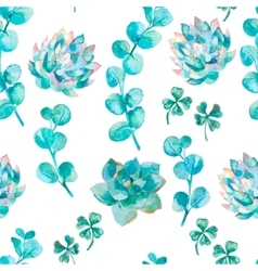 Watercolor eucalyptus leaves and succulent Hand vector image vector image