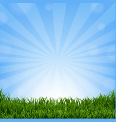 grass border with sunburst vector image