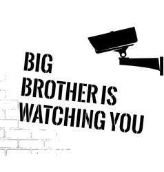 big brother poster with security camera vector image vector image