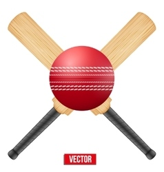 cricket leather ball and vector image