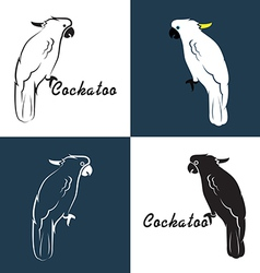 image of an cockatoo vector image