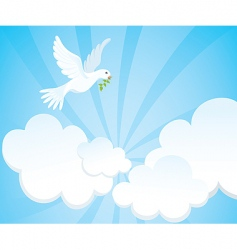 dove in the sky vector image vector image