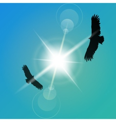eagles-flight -the sun vector image vector image