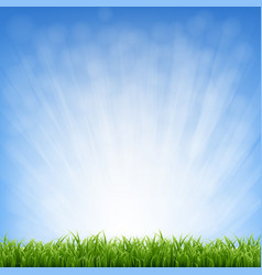 grass with blue sky and grass border vector image vector image