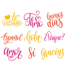 Calligraphic set of spanish translation of vector