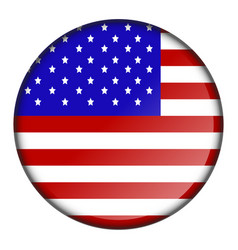 isolated flag button vector image