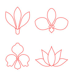 set of flower line art on white background vector image vector image