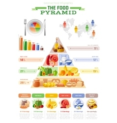 food pyramid infographics vector image