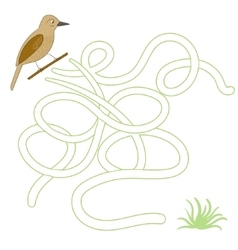 Game labyrinth find a way bird vector