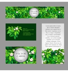 Cards with texture of green leaves vector