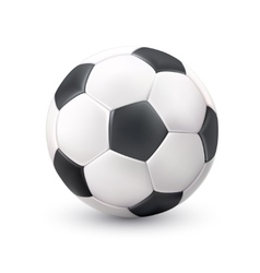 Soccer ball realistic white black picture vector