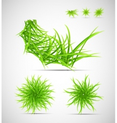 natural themed elements vector image vector image