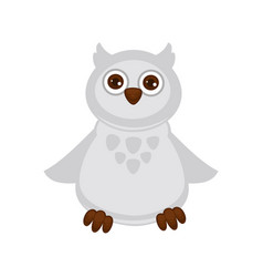 Owl baby with big brown eyes and white plumage vector