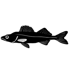 Silhouette of pike vector