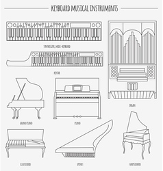 Musical instruments graphic template keyboard vector