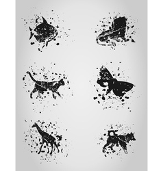 Animal a blot vector