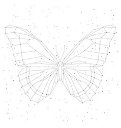 Geometric linear butterfly constellation vector
