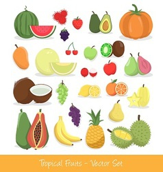 Tropical fruit set vector