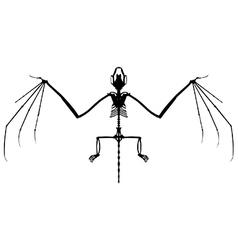 Bat skeleton silhouette vector image
