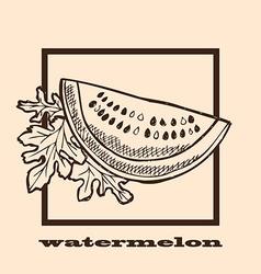 hand drawn watermelon vector image vector image