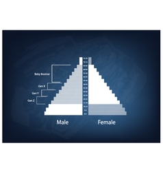 The population pyramids graphs with 4 generation vector