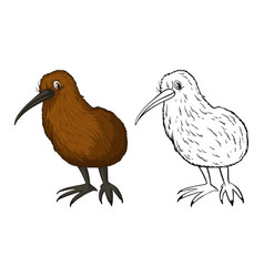 doodle animal for kiwi bird vector image