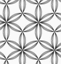 Monochrome slim gray striped six pedal flowers vector