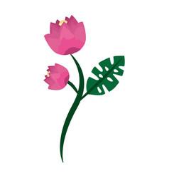 Pink flowers stem leaf natural decoration vector