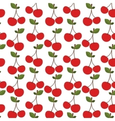 Colorful pattern with two cherry fruit vector