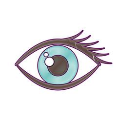 cartoon eye look eyebrow visual icon vector image