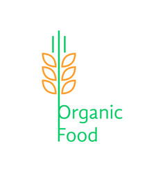Thin line wheat ears like organic food logo vector