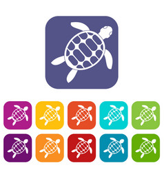 turtle icons set flat vector image
