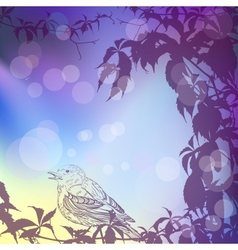 Twilight background with ivy and a bird vector image vector image