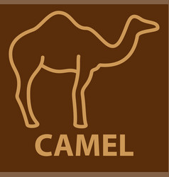 Camel icon in linear style vector