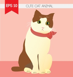 Cute cat animal vector