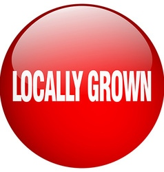 Locally grown red round gel isolated push button vector
