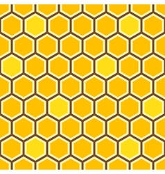 Honey comb color pattern vector