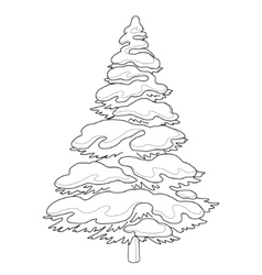 furtree with snow contours vector image