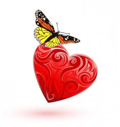 heart and butterfly vector image vector image