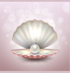 realistic beautiful natural open sea pearl shell vector image vector image