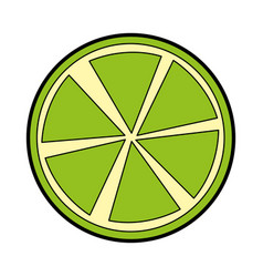 Slice citrus fruit icon vector