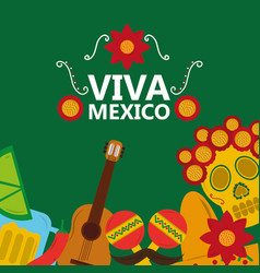Viva mexico poster celebration festival decoration vector