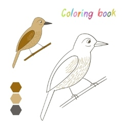 Coloring book bird xenops kids layout for game vector