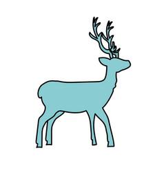 Deer wild animal to natural reserve vector