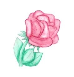 Gentle hand drawn watercolor rose vector