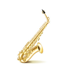 Saxophone isolated on white vector